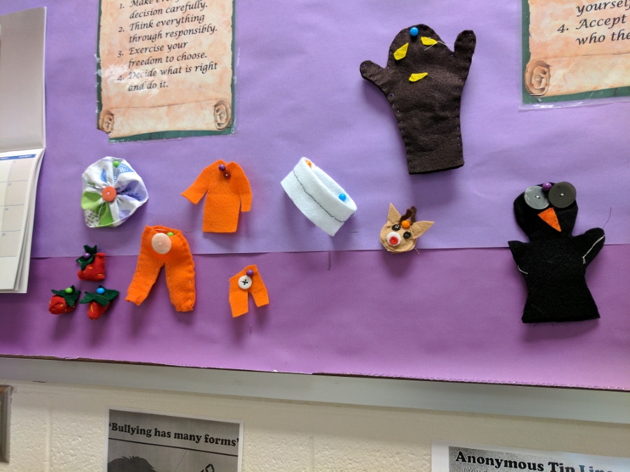 FACS sewing projects